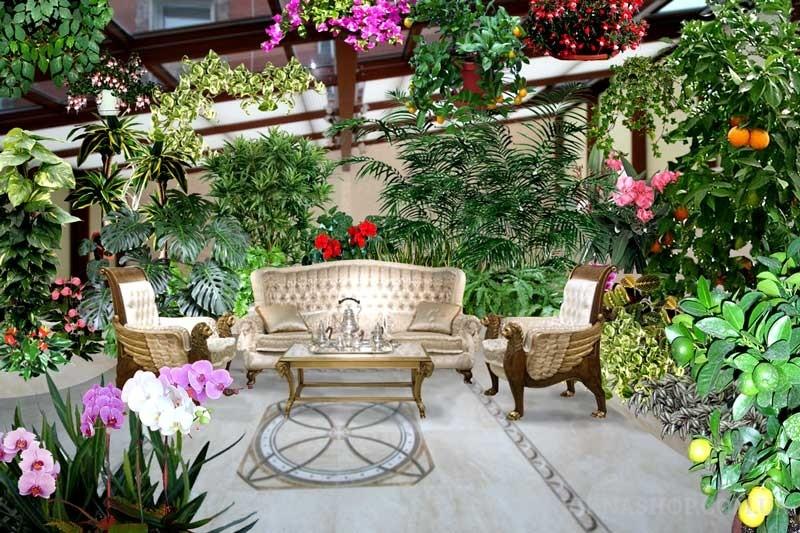 Как сделать зимний сад в квартире или доме? (текст+фото) Часть 1